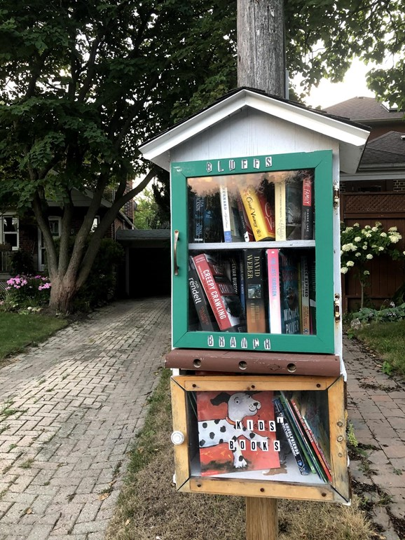 free little libraries with kids section